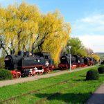 muzeu-locomotive